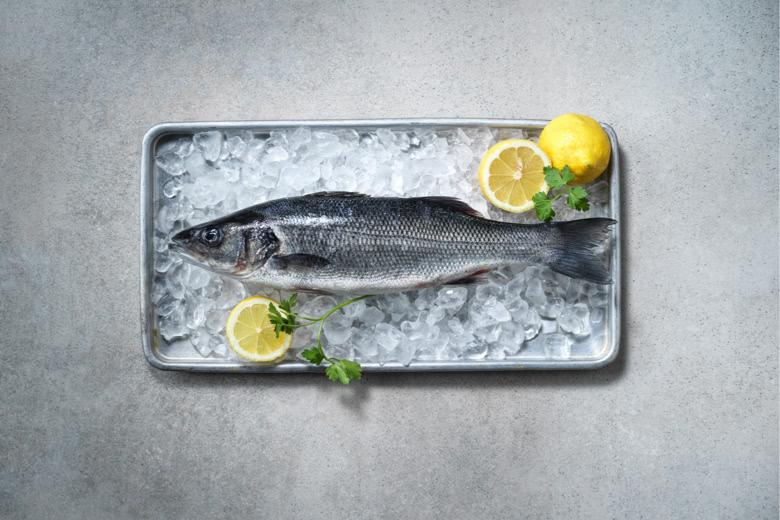 Salzwasserfisch
