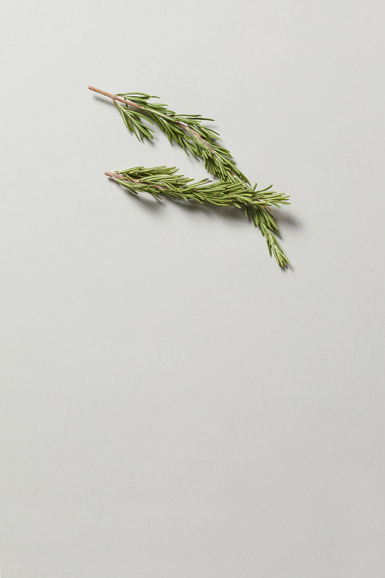 fragranze speziate